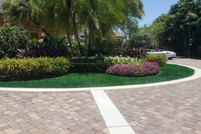 Landscape design company landscaping services palm for Burowand design
